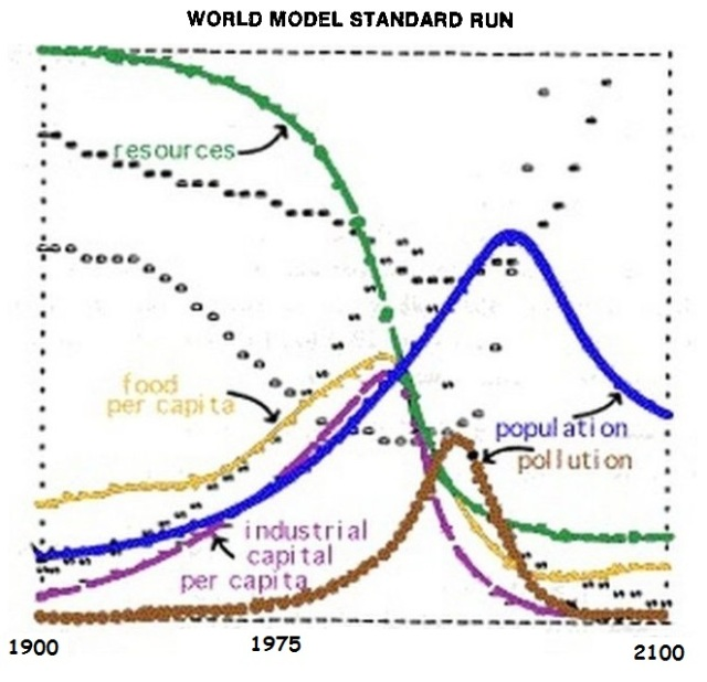 WORLD MODEL STANDARD web